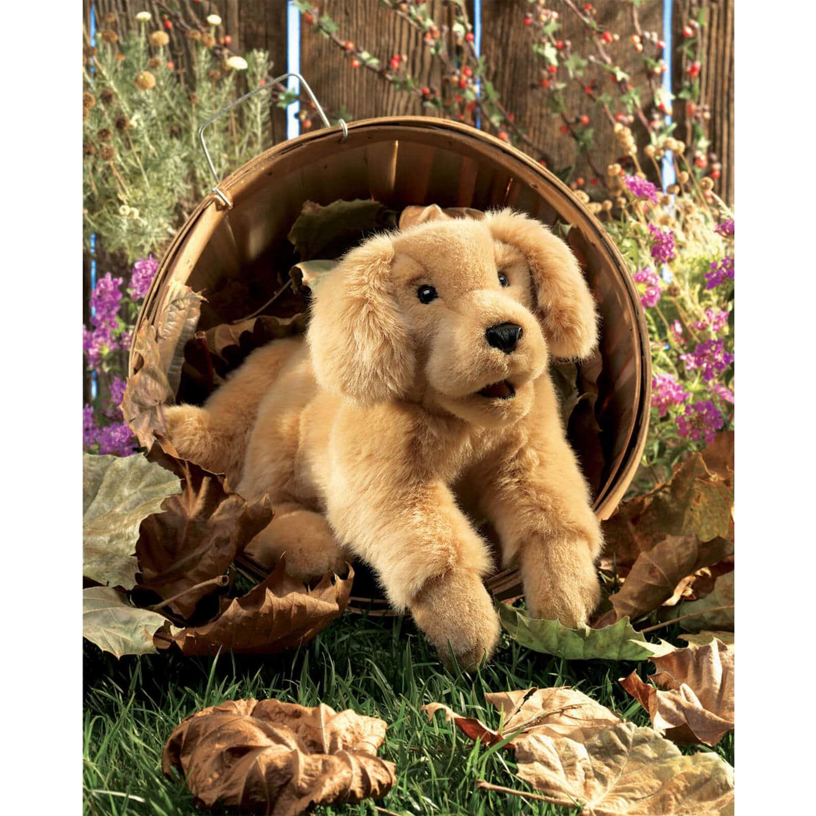 Folkmanis Golden Retriever Puppy Hand Puppet - Jadrem Toys