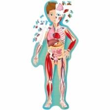 Learn and Explore Puzzle and Book Set The Human Body 205 Pieces