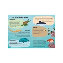 Learn and Explore Puzzle and Book Set The Sea 205 Pieces