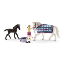 Schleich Horse Club Lipizzaner Care Set