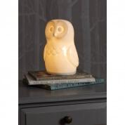 White Rabbit Of England Owl Night Light Lamp
